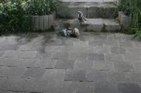 Flamand térkő antik fekete mix 15x15x6 v. 22,5x15x6