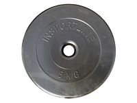 Cementes inSPORTline súlytárcsa 5 kg