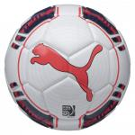 Puma Evo futsal labda