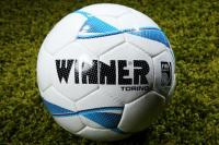 Winner Torino FIFA meccslabda