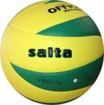 Salta 8018 röplabda (mérkőzés labda)