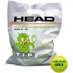 Teniszlabda Head TIP zöld 72 db