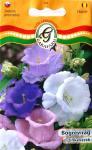 Bögrevirág színkeverék