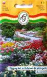 Sziklakerti virágok egynyári keveréke