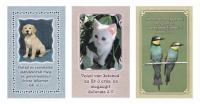 Igekártya / Elek  állatos