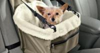Kutya és macska hordozó táska - autóba