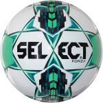 Select Forza tréning labda