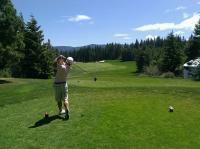 Golf ütő  ( fém )