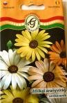 Afrikai aranyvirág színkeverék