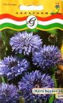 Búzavirág kerti kék