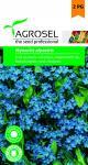 Kéknefelejcs, Myosotis alpestris - 1 g