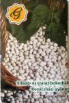 Kifejtő- és száraz bokorbab - Kovácsházi gyöngy