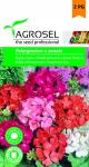 Muskátli színkeverék, Pelargonium x zonale - 0,08 g