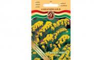Sóvirág egynyári sárga