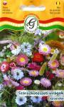 Szárazkötészeti virágok keveréke