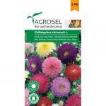 Teltvirágú őszirózsa színkeverék, Callisephus chinensis L. 1 g