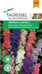 Teltvirágú szarkaláb színkeverék, Delphinium consolida L. - 1 g