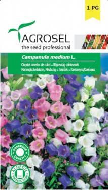 Bögrevirág színkeverék, Campanula medium L. - 0,1 g