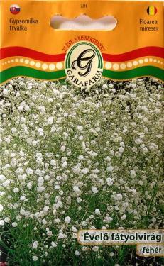 Fátyolvirág évelő fehér