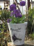Provence levendula agyag kaspó