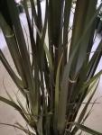 Bambusz műnövény 165 cm magas