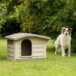Kutya bungalow kicsi