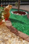 Üveg zúzalék (Fehér és Zöld)