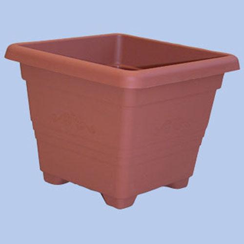 Műanyag négyszög cserép Begónia 25