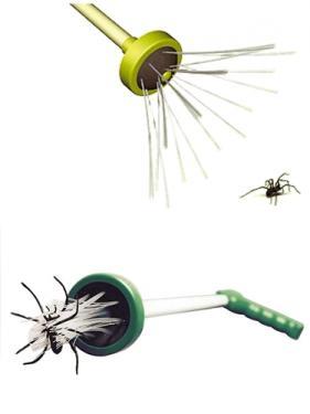 Pókfogó és poloska fogó