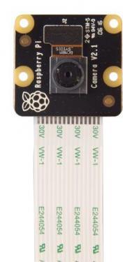 Raspberry Pi PiNoIR Camera V2