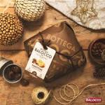 Bottega Balocco marron Glaces panettone 750g