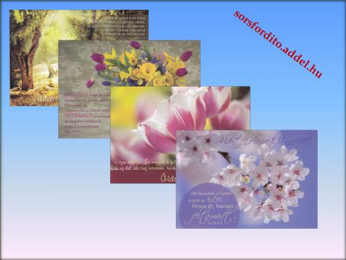 Képeslap / kerügmás húsvéti