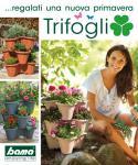 A Virágcserép Trifoglio
